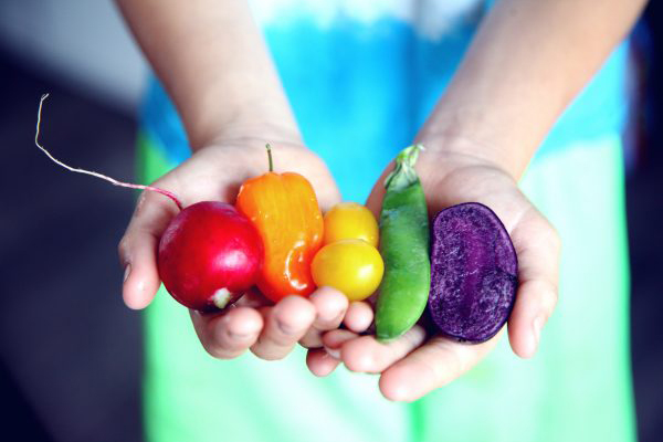 Transitiecoalitie voedsel